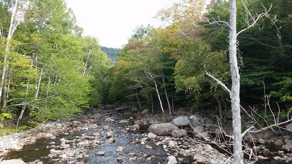 creek near marcy